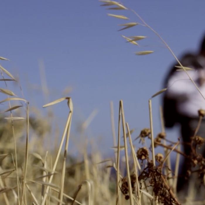 Αρης & Εμμανουέλα | Wedding Video | Wedding Cinematography |Βιντεο Γάμου